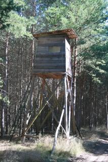 Jagdeinrichtung im Forst Colbitz